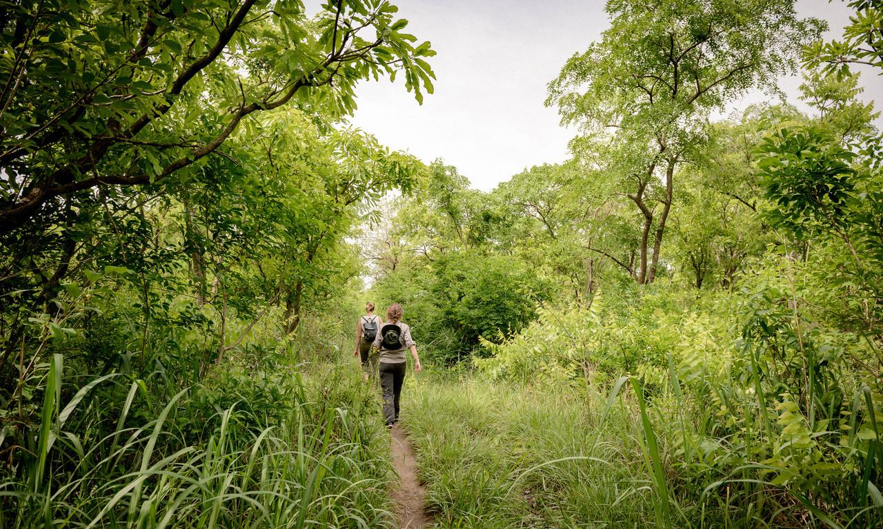 Waldinventur und weitere Aktivitäten in PROJECT TOGO