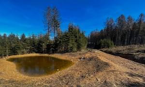 Deutschland Plus Taunus: Lebensraum Biotop
