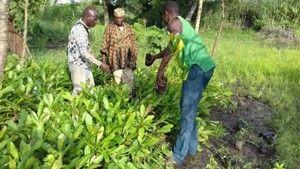 FOKPO - Landwirtschaftkooperative...