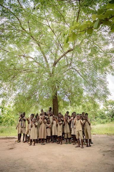 Auch bei Regen pflanzen Freiwillige junge Bäume.